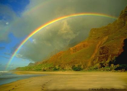 rainbows1-1